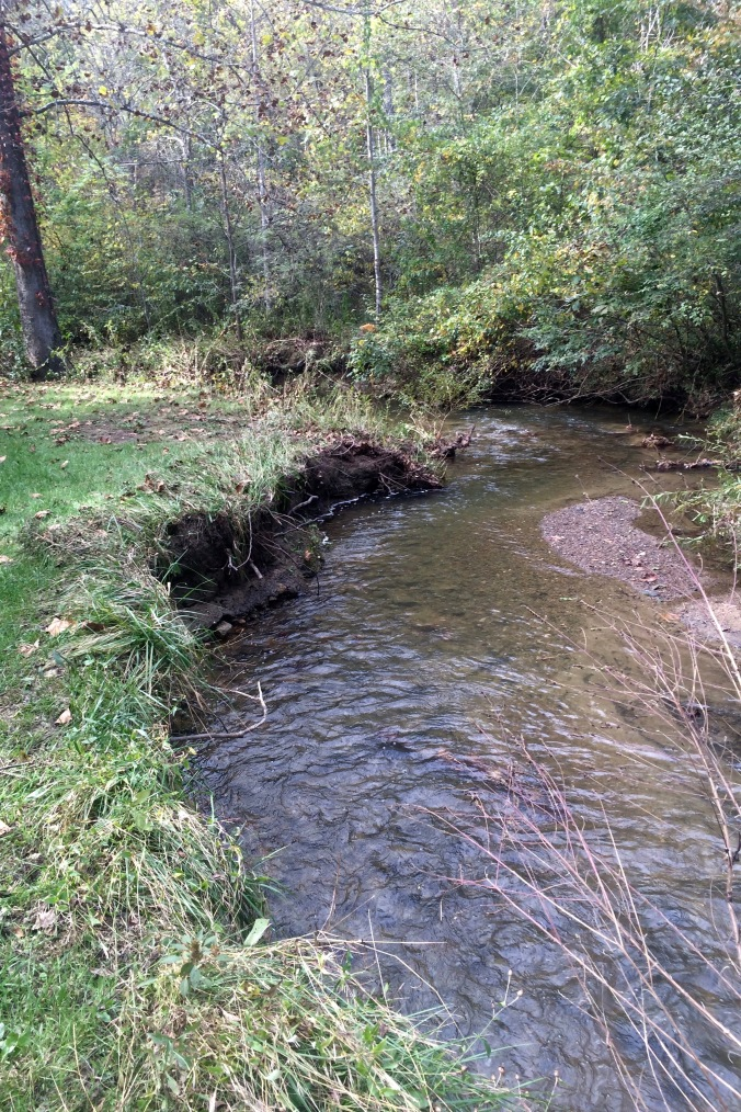 This photo shows Tom's Creek just downstream from where it flows beneath the trail.  Note the left side of the creek (outside of a slight curve) and how its sides are so heavily eroded by the recent flood that grass which had been growing on flat ground just weeks ago is now hanging down over the creek, the land literally ripped from beneath its roots.